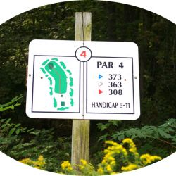 Hole-4 Middle-Course-1