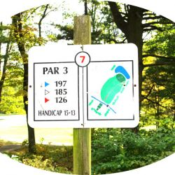 Hole-7 Middle-Course-1