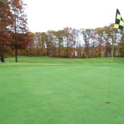 middle south tour hole 015-015